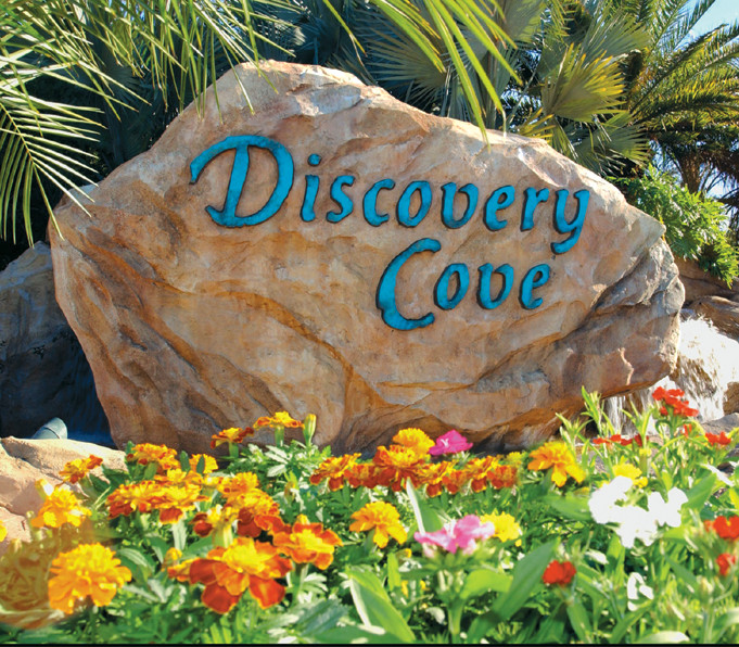 discoverycoverock