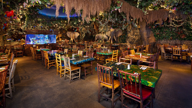 rainforest-cafe-downtown-disney-gallery03